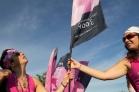 pink flag 2013 Chicago Susan G. Komen 3-Day breast cancer walk