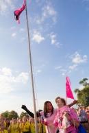 one day closer flag 2013 Chicago Susan G. Komen 3-Day breast cancer walk