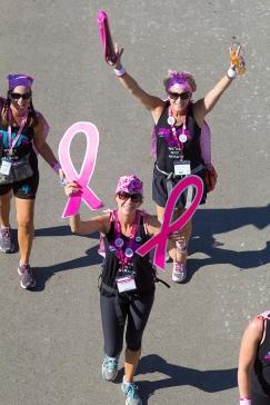 pink ribbon 2013 Michigan Susan G. Komen 3-Day breast cancer walk