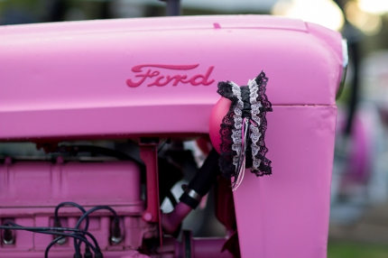 """""""Pinkie Pearl"""" waits patiently on the Seattle 3-Day to raise more awareness about breast cancer"""