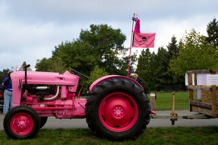 "David's pink tractor, ""Pinkie Pearl,"" flies the pink pirate flag and even has its own Facebook page"