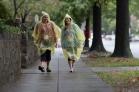 rain poncho 2013 Washington DC d.c. Susan G. Komen 3-Day breast cancer walk