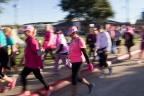motion 2013 Dallas Fort Worth Susan G. Komen 3-Day breast cancer walk