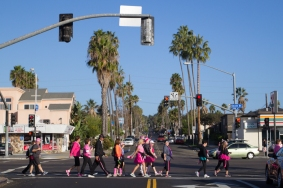palm tree cross the road 2013 San Diego Susan G. Komen 3-Day breast cancer walk