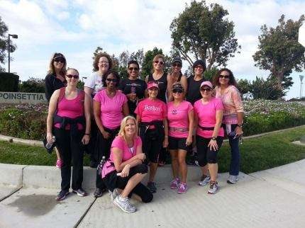 2014 susan g. komen 3-day breast cancer walk san diego training