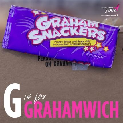 susan g. komen 3-Day breast cancer walk graham snacker grahamwiches
