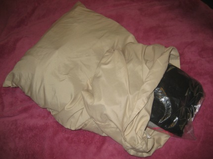 susan g. komen 3-day breast cancer walk blog camping hacks clothes in pillow case