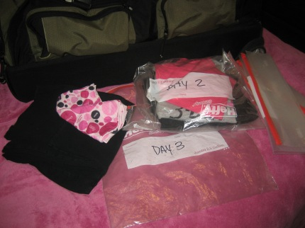 susan g. komen 3-day breast cancer walk blog camping hacks ziploc bags clothes