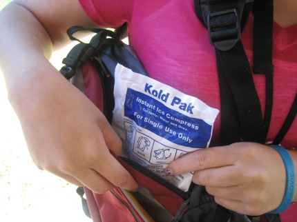 susan g. komen 3-Day breast cancer walks walking hacks ice packs