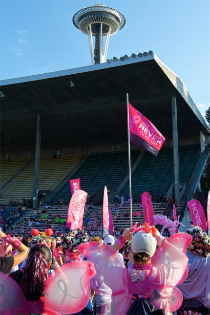 susan g. komen 3-Day walk blog 60 miles breast cancer seattle