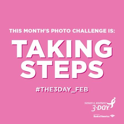 susan g. komen 3-day breast cancer walk blog 60 miles photo challenge february taking steps