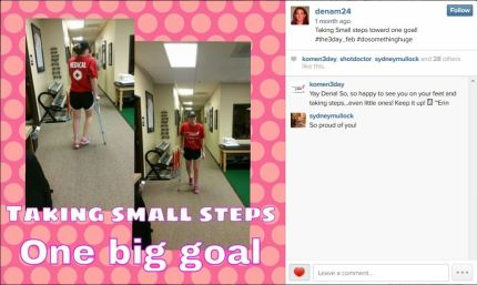 susan g. komen 3-Day breast cancer walk blog 60 miles instagram february photo challenge