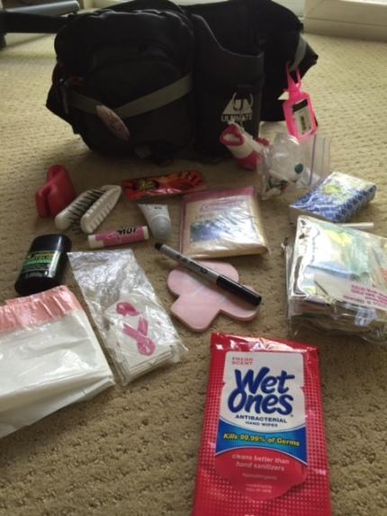 susan g. komen 3-Day breast cancer walk blog 60 miles waist fanny pack supplies packing