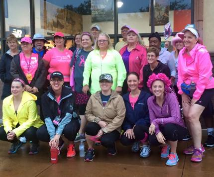 susan g. komen 3-Day breast cancer walk blog training meet-up 2015 may dallas fort worth