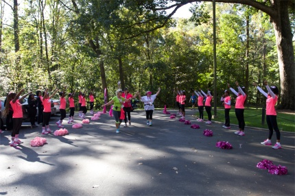 SUsan G. Komen 3-Day breast cancer walk blog 60 miles atlanta route peek insider's guide