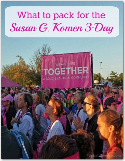 susan g. komen 3-day breast cancer 60 miles walk blog jessica cohen eat sleep be blogger walker