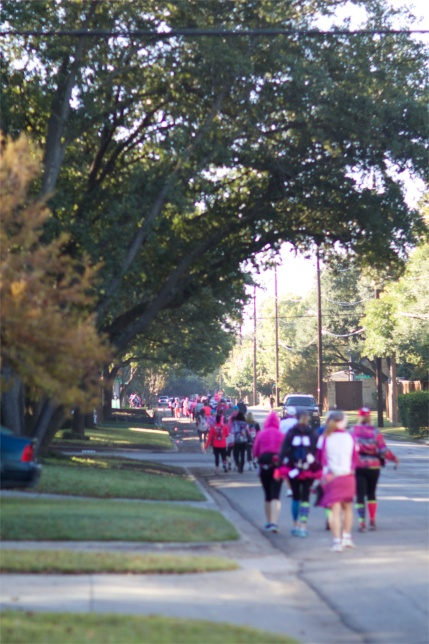susan g. komen 3-day breast cancer walk blog 60 miles dallas fort worth route insider's guide