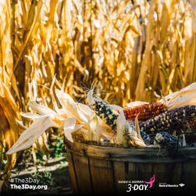 3Day_2017_Social_Holiday_Thanksgiving_1