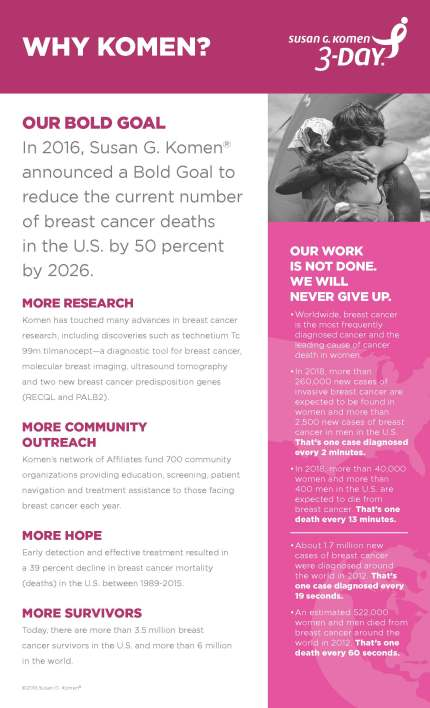 3DAY_2016_KomenInfographics_2_fp